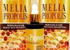 Manfaat Melia Propolis Untuk Ambeien Atau Wasir